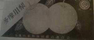多摩川梨の木箱ラベル